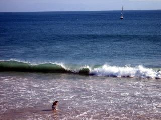 Beautiful 1 BR Condo on the Beach in Punta Mita