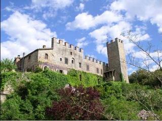 Torre del Vescovo -- Medieval Castle in Tuscany, Siena