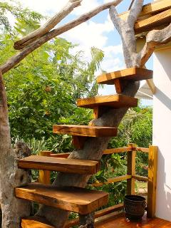 Stairs Built into Driftwood Tree leading up to Roof Top Terrace-360 Degree Views of Treasure Beach