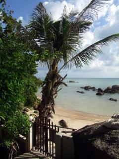 Gate palm