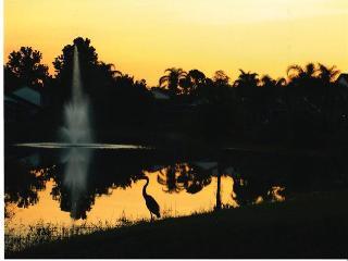 Stunning Lake View House 2mls to Disney,games room