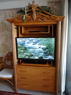 New 40 inch LED HDTV and Blu-ray Player - Maui Kai 806 - www.mk806.com