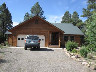 Cozy Mountain Retreat for YOU! New LOWER Rates!, Pagosa Springs