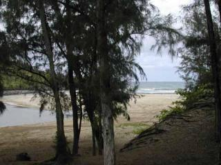 Beach Cottage with Privacy, Hot Tub, Kayak, Wi-Fi.