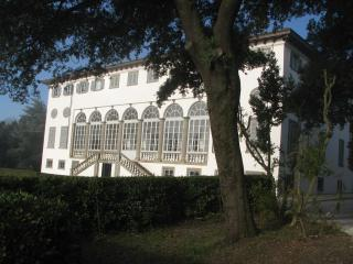 Historic 2 Bedroom Villa in Lucca, Italy
