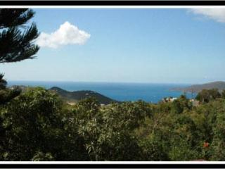 You CAN AFFORD ELEGANCE at Wintberg Place., Charlotte Amalie