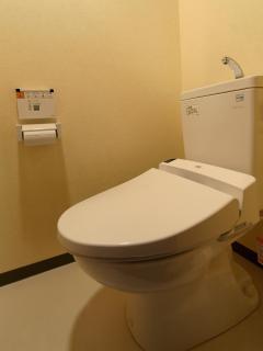 interior 107 toilet 01