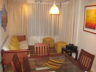 Great location 2/2 condo sleeps 5 in Viña del Mar