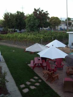 Our newly landscaped backyard. So Relaxing! 275 vines