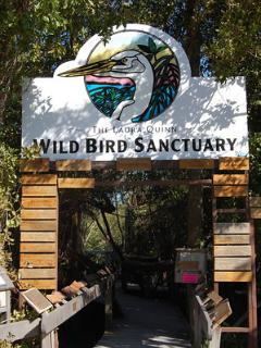 Wild Bird Sanctuary nearby