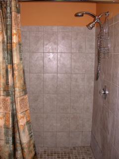 Extra large shower