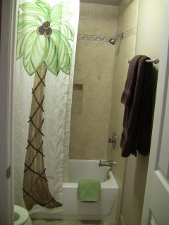 Master Bedroom Bath & Shower
