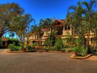 The Palms #7 Flamingo Beach Costa Rica, Parking Condo at right