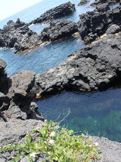 lava rocks and sea in front of the house in the summer