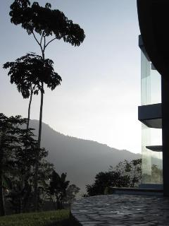 Mountain and Rainforest views