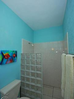 master 2 bathroom
