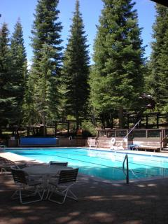View of the Chinquapin swimming pool and recreation area that includes 2 saunas and volleyball
