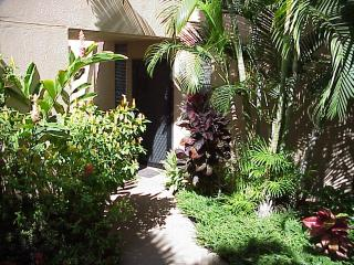 Lush Tropical Courtyard Entry, Private, Out of View of Car That is Close Behind Wall
