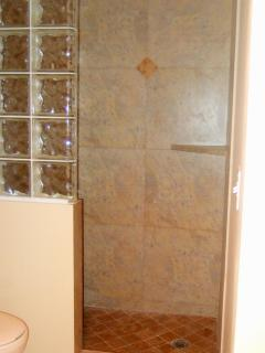 Walk in tiled shower with glass blocks