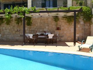 Villa Antonia with private swimming pool