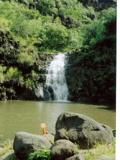 nearby Waiemia falls