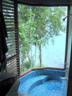 The Casa Master Bedroom Shower / Bathtub over looks the lake