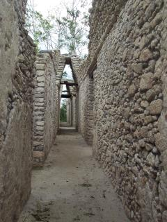 Day trips to the Mayan ruins