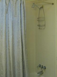 Shower Tub Combination and Adjustable Height Showerhead