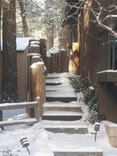 Snowy Front Walkway