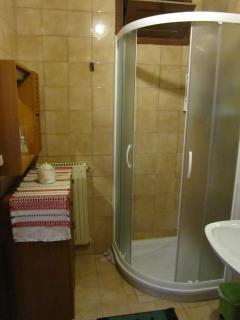 Shower in downstairs bathroom