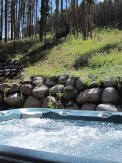 Hot Tub Looking at National Forest