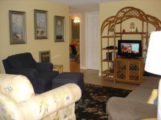 Living Room w/sofa sleeper