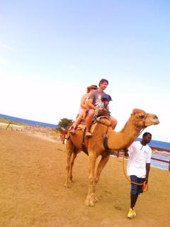 6-WOULD YOU LIKE TO GO ON A CAMEL RIDE (30 MIN. TO ATTRATCTION)