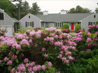 STUNNING ESTATE LIKE PROPERTY NEAR VILLAGE/BEACH! 96974, Osterville