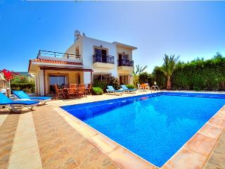 Villa Nayia - WIFI,Table Tennis,Sea Views,Pool&BBQ, Paphos