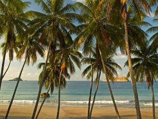 Villa Punto de Vista - Manuel Antonio Beach , just minutes from the villa!