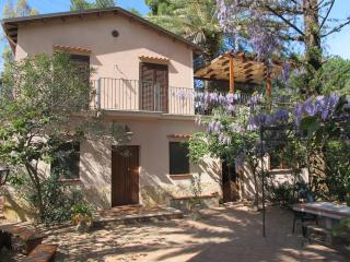 Wisteria House: an old Villa submerged in an Oasis, Cefalu
