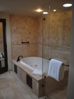 #1 Master Bath/Shower