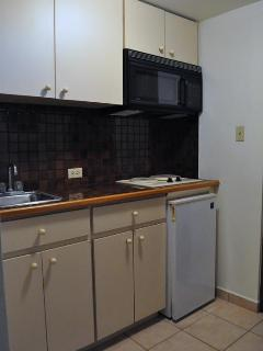 Second Kitchen in Second Bedroom