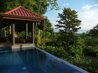 Villa Exotica - Luxury, Sweeping views & concierge, Dominical