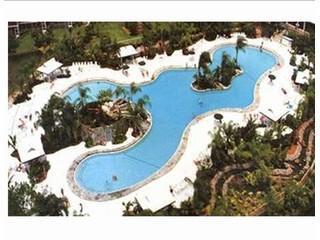 Southwest Florida\'s largest heated pool
