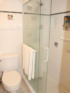 Handicap friendly walk-in shower.  Grab bars for your security