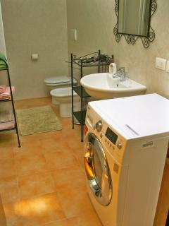 The bathroom, equipped with washer/drier