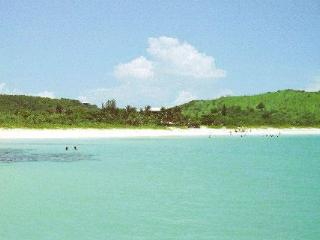 At Flamingo Beach, Culebra!