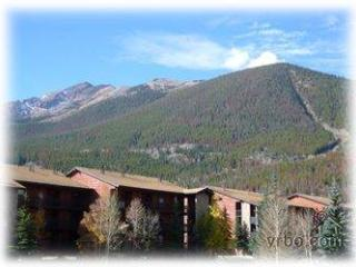 NEIGHBORLY 1 BDRM, MOUNTAIN SIDE CONDO (MS222)