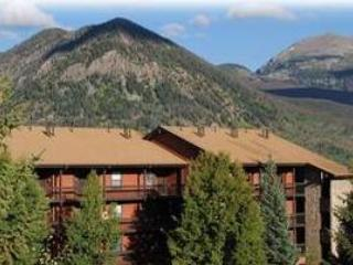 ATTRACTIVE 1 BDRM MOUNTAIN SIDE CONDO 239