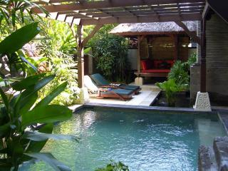 Luxury Apartment with Private Pool - Nusa Dua