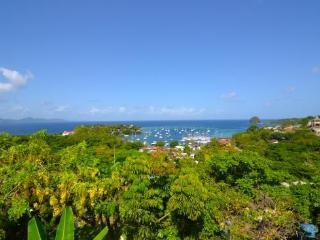 Moonwater Garden Apartment - 1 Bedroom - St.Vincent, Petit St.Vincent