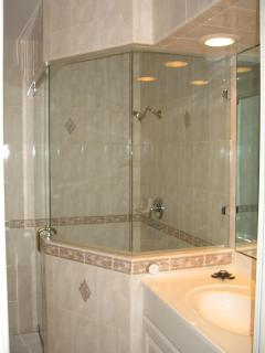 Bath & Steam Shower
