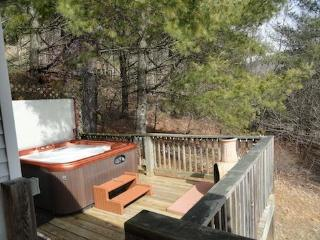 Private & Secluded, heavily wooded just a short  walk to the water, boat slip & Canoe.